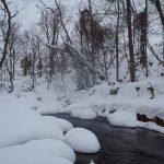 雪深い山の中の渓流へ仲間と一緒に行って来ました