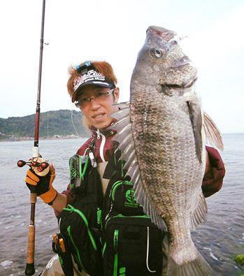 新潟には古くから、クロダイの渚釣りと言う狙い方があります。