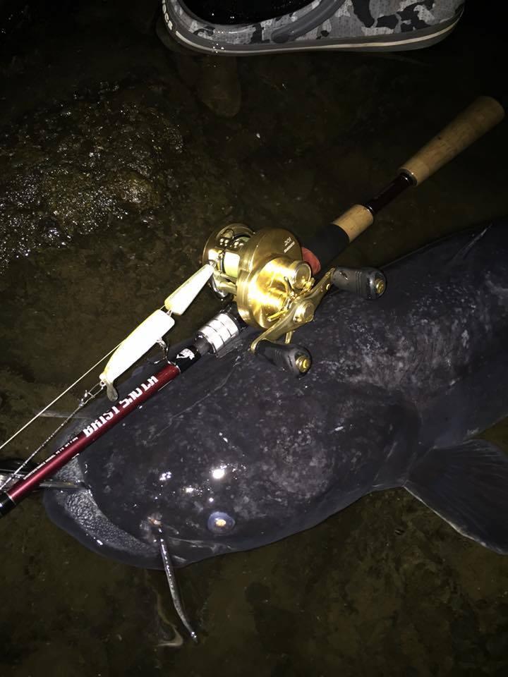 Fishmanユーザーさんが5.10LHでメーター越えのオオナマズ!
