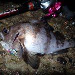 Beams79ULプロトでメバルを釣りに行きました。