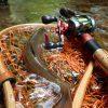 源流域まで足を伸ばす釣りが増えてきました