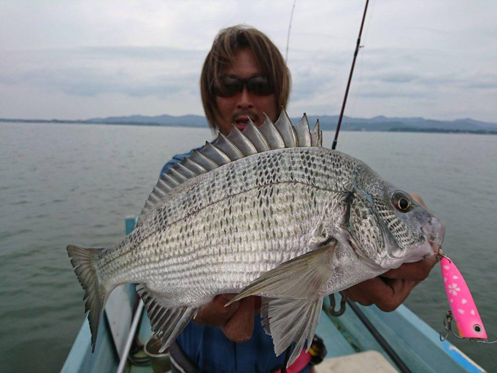 先日浜名湖でトップチヌ!
