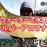 BRIST 5.10LHでのトップウォーターフィッシング動画をロッドの解説付き(字幕)で公開します!