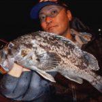 宮城県の港湾ライトゲームですが兎に角魚種が豊富です!