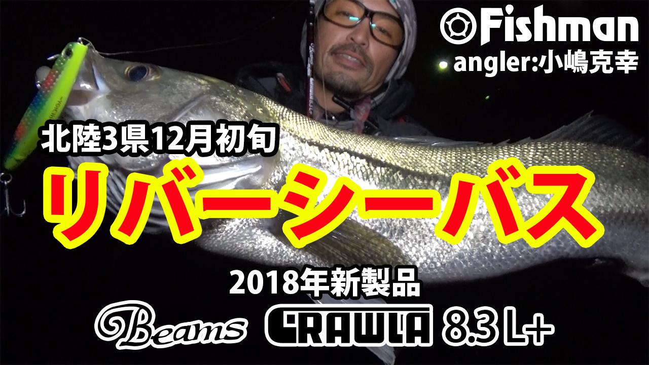 北陸三県で初冬のリバーシーバス釣り編公開です!