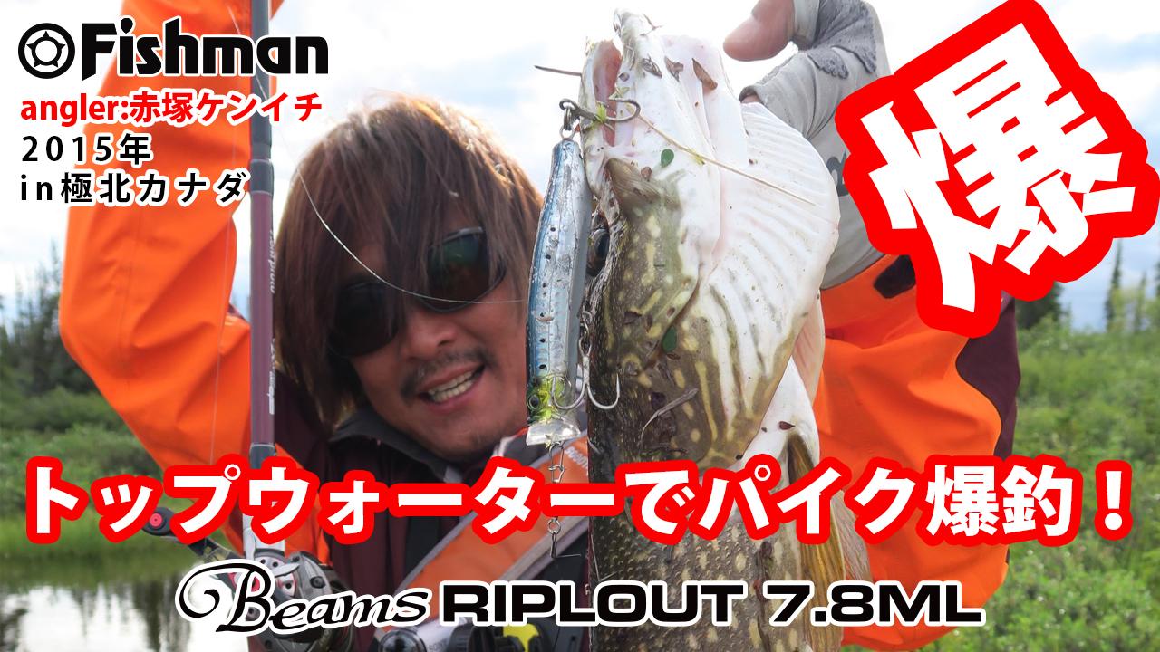 トップウォータールアーでパイク釣り動画を公開!