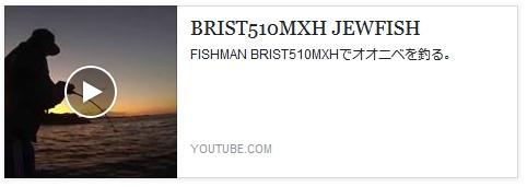BRIST510MXHでオオニベ