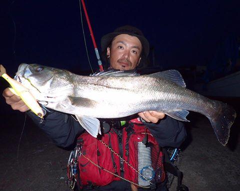 シーバス、ドリフトの釣りを捨てトップで釣れる場所探し