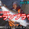 パタゴニアで降海型ブラントラウトのシーランブラウンを狙う動画を公開