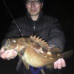 Beams CRAWLA6.6L+でエゾメバル釣り!