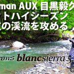Fishman AUX 目黒毅久が渓流ベイトでアメマスを狙う動画を公開!