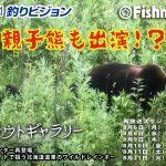 【再放送スケジュール】怪魚ハンター再登場!渓流ベイトで狙う北海道道東のワイルドレインボー