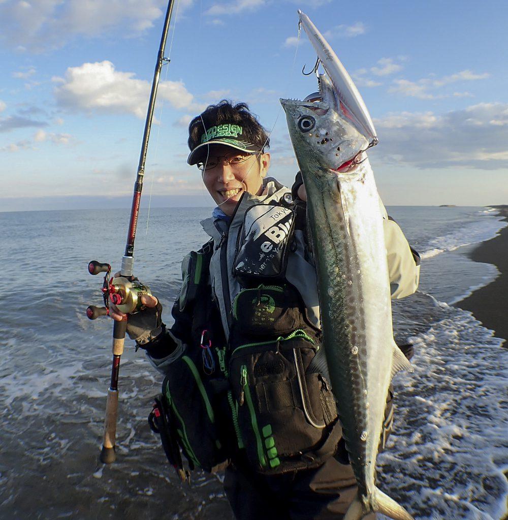 西村 サワラ 回遊魚