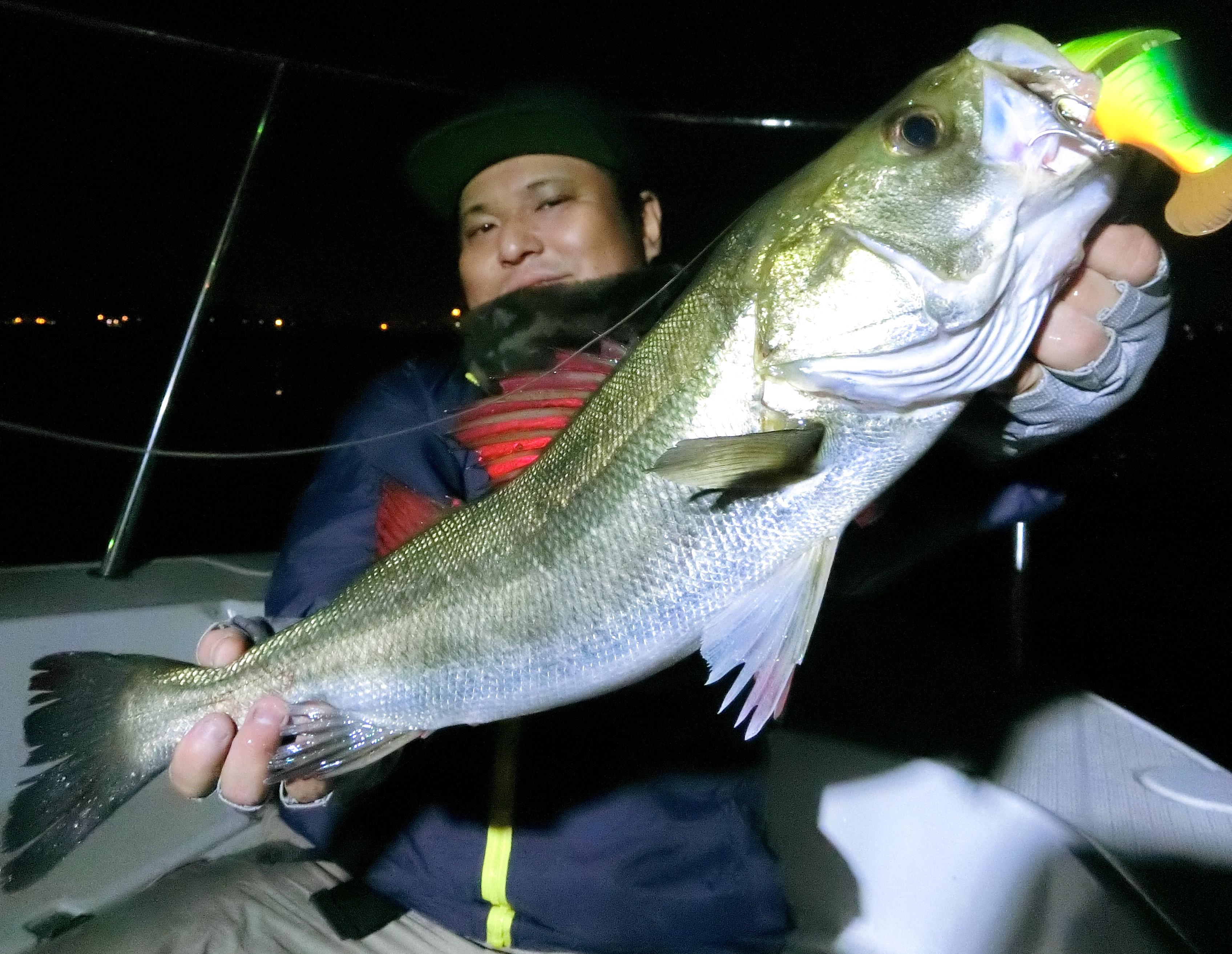 今年も行ってきました、横浜・ボートシーバス!コモドでビッグベイト縛りという修行のような釣りでした(笑)