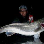 小型ルアーで大型の鱸を釣るための必須条件は、大暴れする魚に追従し魚と極力ケンカしないようなファイトをすること