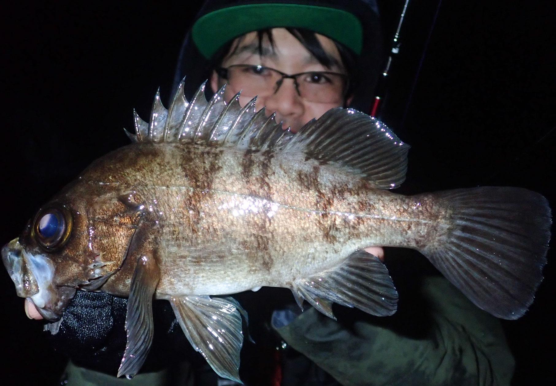 デカメバルシーズン到来!適正な糸巻量で快適な釣りを