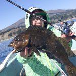 北海道のGWはゴールドに輝く根魚パラダイス!オフショアロックフィッシング!