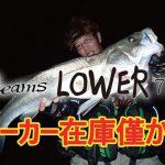 Beams LOWER7.3L メーカー在庫残りわずか!