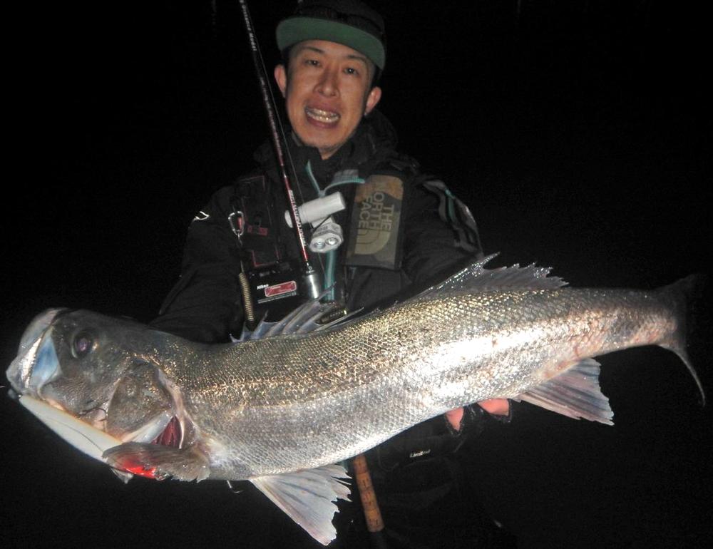 熊本でアフターシーバス釣行