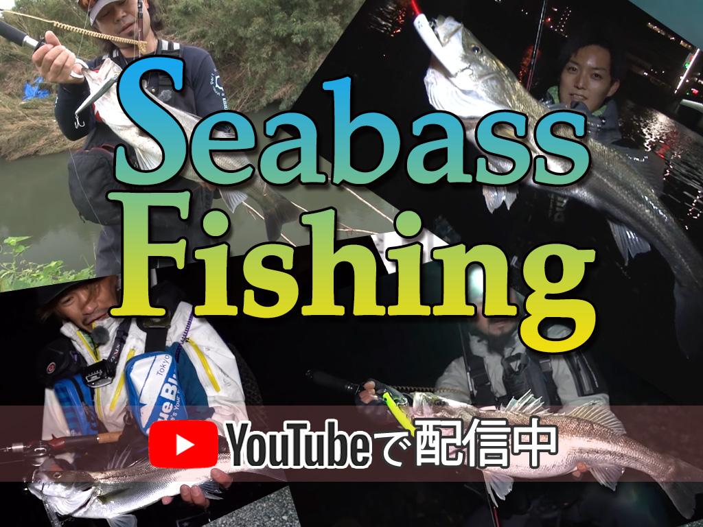 シーバス映像特集! Fishmanの強靭なロッドでフィッシュイーターに挑む