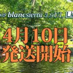 Beams blancsierra3.9UL LIMITEDの発送日が決定致しました