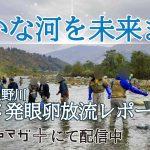 新潟県魚野川ヤマメ発眼卵放流レポート。ルアマガ+にて配信中!