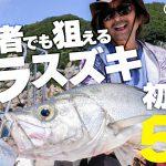 【FishmanTV 新作公開】シーバスアングラー必見!初心者でもヒラスズキが狙える!?崖際ギリッギリのボートゲーム!
